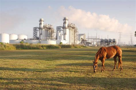 Record production of natural gas to continue through 2020