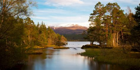Holiday Cottages in Cairngorms National Park, Scotland
