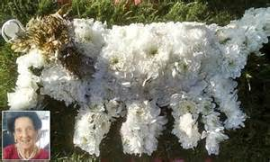 Man is stunned with his 'Jack Russell' floral tribute for