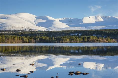 Near Aviemore Visitor Guide - Accommodation, Things To Do